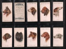 Tobacco Cigarette cards Dogs Heads 1929 by  Wardle